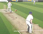 20 20 Cricket