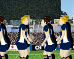 play CA BRUMBIES CHALLENGE
