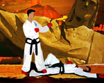 play TAEKWONDO
